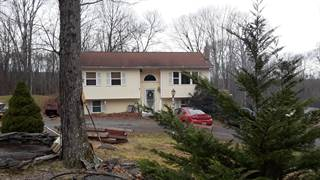 Single Family for sale in 136 Mountainview Rd, Greeley, PA, 18425