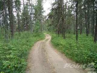 Land for rent in 6 Lot 6 Blk 3 Plan 102093285, RM of Hudson Bay No 394, Saskatchewan