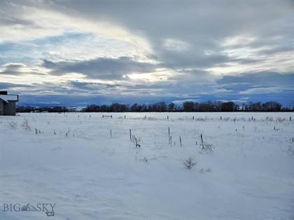 Lots And Land for sale in Tbd Tillyfour, Bozeman, MT, 59715