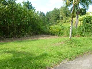 Land for sale in Finca 7860m2 Rio Grande, PR, Rio Grande, PR, 00745