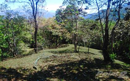 Lots And Land for sale in 50% DISCOUNT for Large  Lot #411 in an Established Gated Mountain Community, Puriscal, San José