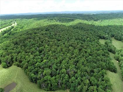 Lots And Land for sale in 22310  E Highway 12, Hindsville, AR, 72738