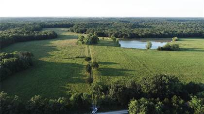 Farm And Agriculture for sale in 165 McCullough, Bellflower, MO, 63333