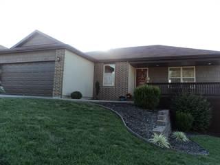 Single Family for sale in 1311 South Solaira Street, Ozark, MO, 65721