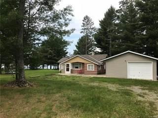 Single Family for sale in 6038 BIG WOLF LAKE Road, Lewiston, MI, 49756
