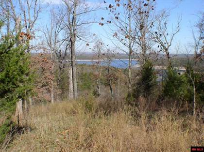 Lots And Land for sale in LAKE VISTA LANE, Yellville, AR, 72687