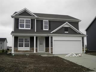Single Family for sale in 307 Camden Lane, Beecher, IL, 60401