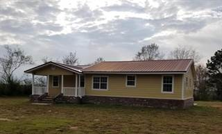 Single Family for sale in 2945 MS-42, Sumrall, MS, 39482