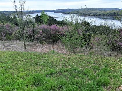 Lots And Land for sale in Lots 39-40 Jackson Hollow Road, Galena, MO, 65656