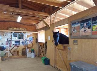 Farm And Agriculture for sale in 243 Hale Road, Stanley, NM, 87056