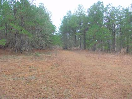 Lots And Land for sale in 573 E GA HWY 137, Cusseta, GA, 31805