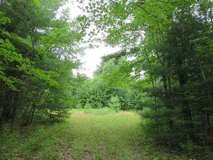 Lots And Land for sale in Sand Street, Westville, NY, 12926