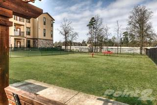 Apartment for rent in Discovery at Kingwood, Kingwood, TX, 77339