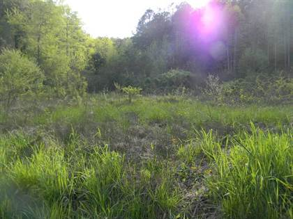 Lots And Land for sale in 00 Long Branch, Van Lear, KY, 41265
