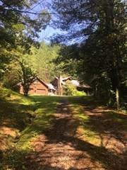 Single Family for sale in 1413 Flax Patch Road, Vicco, KY, 41834