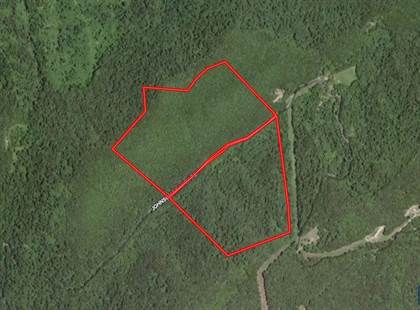 Lots And Land for sale in Johnson Branch Rd, Bandy, VA, 24602
