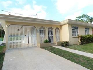 Single Family for sale in No address available PR 829, Buena Vista, PR, 00956