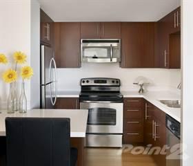 Apartment for rent in The Hollywood Ardmore - 2 Bedroom, Los Angeles, CA, 90028