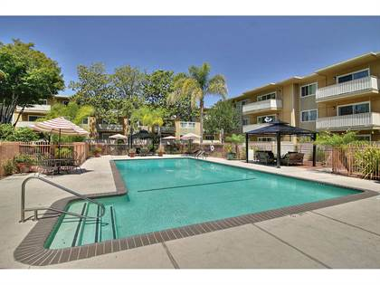 Apartment for rent in 2101 California Street, Mountain View, CA, 94040