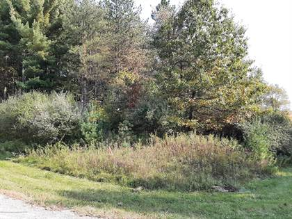 Lots And Land for sale in 0 Blue Water Way, Perry, MI, 48872