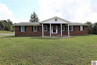 Single Family for sale in 6537 US Hwy 62, Bardwell, KY, 42023