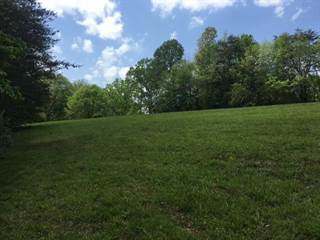 Farm And Agriculture for sale in 556 Fox Point Road, Jamestown, KY, 42629