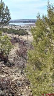Lots And Land for sale in Lot 3 v.5 Road, Dolores, CO, 81323