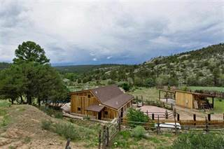 Farm And Agriculture for sale in Mile Marker 13 Highway 111, Vallecitos, NM, 87581