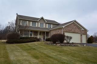 Single Family for sale in 17111 Fieldstone Drive, Harmony, IL, 60142