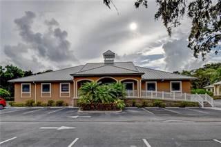 Comm/Ind for sale in 2965 ALT 19, Palm Harbor, FL, 34681