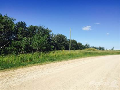 Lots And Land for sale in 0 CHRYPKO ROAD, Winnipeg, Manitoba, R2N 4E3