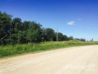 Land for sale in 0 CHRYPKO ROAD, Winnipeg, Manitoba, R2N 4E3