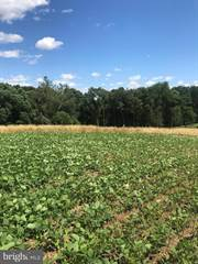 Land for sale in 43 ESHELMAN MILL ROAD LOT 1, Greater Intercourse, PA, 17602