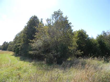 Lots And Land for sale in Lot 1 East Farm Rd 94, Strafford, MO, 65757
