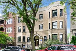 Apartment for rent in 1222-24 W. Argyle St., Chicago, IL, 60640