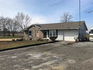 Single Family for sale in 11477 Route 166, Marion, IL, 62959