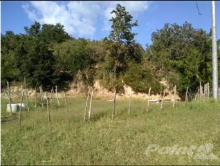 Residential Property for sale in Barrio Cambalache, Yauco, PR, 00698