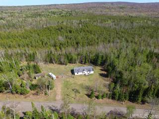 Single Family for sale in 3914 Cedar Bay, Calumet, MI, 49913