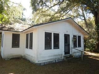 Single Family for sale in 17 SE 4TH AVENUE, Lutz, FL, 33549