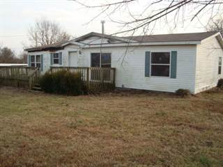 Residential Property for sale in 711 West Woodbine Road, Ash Grove, MO, 65604