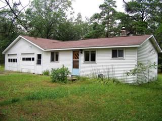 Single Family for sale in 21342 County Road 624, Hillman, MI, 49746
