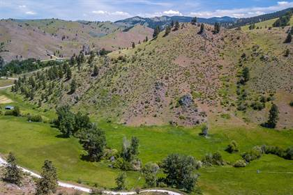 Farm And Agriculture for sale in Nhn Little Sleeping Child Road Parcels E & F, Hamilton, MT, 59840