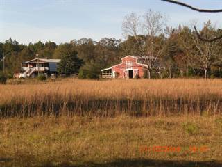 Farm And Agriculture for sale in 302 Ott Stanford Rd, Lumberton, MS, 39455