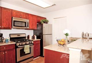Apartment For Rent In The Fountains At Morgan Falls Managed By Lcor Lamlp Llc Wonder