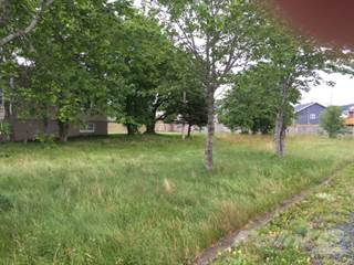 Land for sale in 73 Old Bay Bulls Rd, St. John's, Newfoundland and Labrador