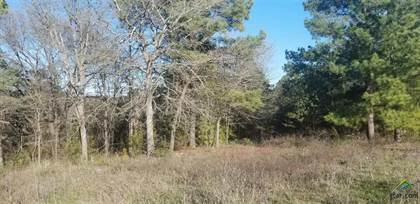 Lots And Land for sale in 449 E INTERSTATE 20, Merkel, TX, 79536
