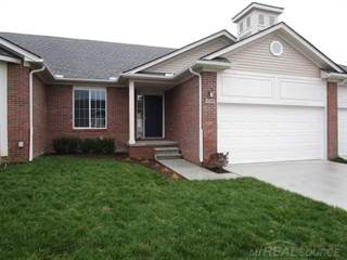 Condo for sale in 47338 Joanne Smith Ln, Greater Mount Clemens, MI, 48047
