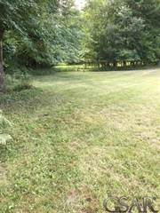 Land for sale in 8167 Tyrrell, Laingsburg, MI, 48848