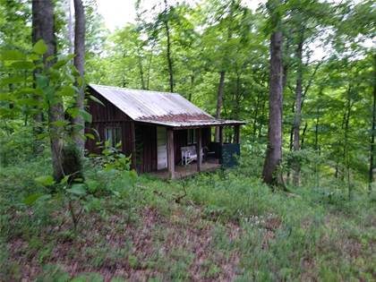 Farm And Agriculture for sale in 4992 County Road 532, Jackson, MO, 63755