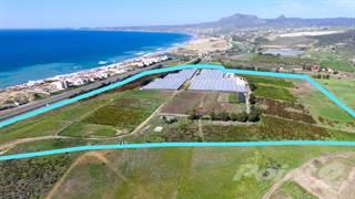 Farm And Agriculture for sale in Rancho Daisy | Investment LAND | Km. 50 Carretera Libre Tijuana - Ensenada, Playas de Rosarito, Baja California